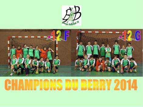 -12 champions berry 2014