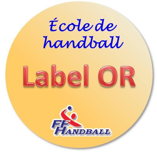 """Résultat de recherche d'images pour """"label école de handball 2016"""""""